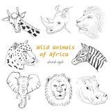 Uppsättningen av vilda djur av Afrika skissar in stil Arkivfoton