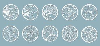 Upps?ttning Sidor ek, lönn, rönn, kastanj, bär, ekollon, frö, björk, aska Mallar i form av cirklar Abstrakta cirklar, royaltyfri illustrationer