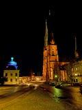 Uppsala domkyrka och Gustavianum vid natt Royaltyfria Foton