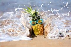 Uppsluppen ananas med personlighet i havet i Maui royaltyfria foton