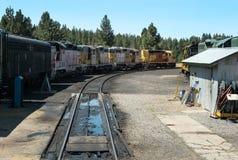 Uppställda lokomotiv royaltyfri foto