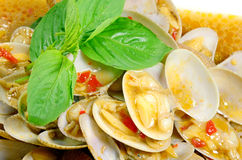Uppståndelse stekte musslor med grillad chilideg royaltyfria bilder