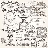 Uppsättning av calligraphic beståndsdelar för vektor för design Royaltyfria Bilder