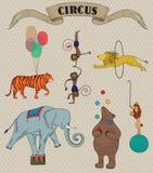 Uppsättning av cirkusdjur Arkivfoton