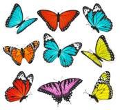 Uppsättning av den färgrika fjärilsvektorn Royaltyfria Bilder