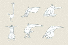 Uppsättning av den gulliga tecknad filmfågeln som isoleras på vit bakgrund Dragen bild för vektor hand Arkivbild