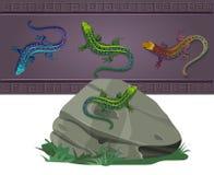 Uppsättning av ödlor av olika färger Arkivbilder