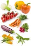 Uppsättning av nya grönsaker Arkivfoto