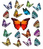 Uppsättning av olika färgrika fjärilar Arkivfoto