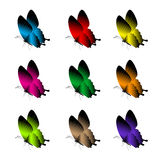 Uppsättning av realistiska färgrika fjärilar som isoleras för vår Fotografering för Bildbyråer