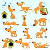 Uppsättning av rolig tecknad filmhundkapplöpning Royaltyfri Fotografi