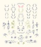Uppsättning av symmetriska blom- beståndsdelar för grafisk design Royaltyfri Bild
