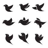 Uppsättning av vektorfågelsymboler Arkivbilder