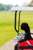 Uppsättningar av golfklubbar Royaltyfri Fotografi