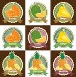 Uppsättningen av den olika nya för etikettsetiketten för tropiska frukter högvärdiga kvalitets- klistermärken för emblemet och lo Royaltyfria Bilder