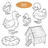 Uppsättningen av gulliga lantgårddjur och objekt, vektorfamilj duckar Royaltyfri Fotografi