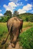 Upptäckt av Thailand arkivfoto
