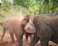 Upptäckt av Thailand royaltyfria foton