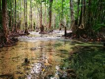Upptäckt av Thailand, Emerald Pool royaltyfri bild