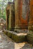 Upptäckt i mitt av den kambodjanska djungeln det Angkor komplexet Royaltyfri Bild