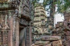 Upptäckt i mitt av den kambodjanska djungeln det Angkor komplexet Arkivfoto