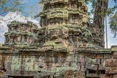 Upptäckt i mitt av den kambodjanska djungeln det Angkor komplexet Royaltyfria Foton