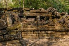 Upptäckt i mitt av den kambodjanska djungeln det Angkor komplexet Arkivbilder