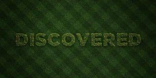 UPPTÄCKT - nya gräsbokstäver med blommor och maskrosor - 3D framförde fri materielbild för royalty royaltyfri illustrationer