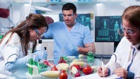 Upptagen dag i laboratorium för GMO matgenetik arkivfilmer