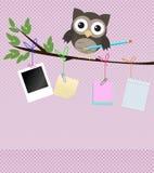 Upptagen owl/liten brun owl på filial med blyertspennan Royaltyfri Fotografi