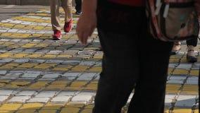 Upptaget stadsgatafolk på zebramarkering stock video