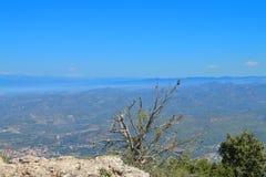 Upptill av ett högt berg Royaltyfria Foton