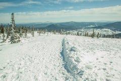 Upptill av snö-täckte kullar Royaltyfria Bilder