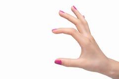 Uppvisning av formatet. Närbild av den kvinnliga handen som gör en gest medan isolat Arkivfoto