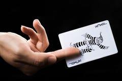 Uprawiać hazard kartę Fotografia Royalty Free