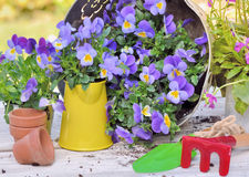 Uprawiać ogródek i narzędzia Zdjęcie Royalty Free
