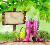Uprawiać ogródek narzędzia i kwiaty na drewnianym tle Zdjęcia Royalty Free