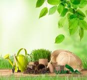 Uprawiać ogródek narzędzia i kwiaty na drewnianym tle Obrazy Stock