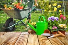 Uprawiać ogródek narzędzia i kwiaty na tarasie Fotografia Stock