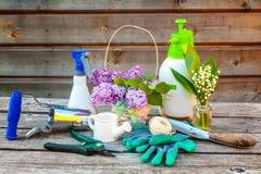 Uprawiać ogródek narzędzia na drewnianym tle fotografia stock
