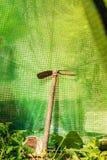 Uprawiać ogródek narzędzia w lato ogródu szklarni Zdjęcie Royalty Free