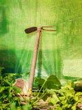 Uprawiać ogródek narzędzia w lato ogródu szklarni Obrazy Stock
