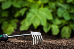 Uprawiać ogródek narzędzie w ziemi Fotografia Royalty Free