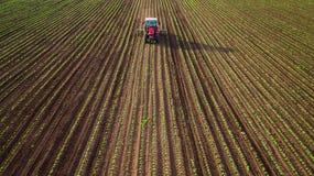 Uprawiać ziemię ciągnikowego oranie i opryskiwanie na pszenicznym polu zdjęcia royalty free