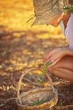 Uprawiać ziemię dziewczyny podnosi w górę jagod obraz royalty free