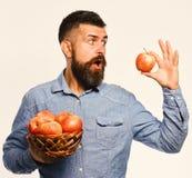 Uprawiać ziemię i jesieni upraw pojęcie Facet teraźniejszość żniwa wyprodukowany lokalnie rolnik z zdziwioną twarzą trzyma czerwo obrazy stock