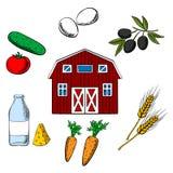Uprawiać ziemię jedzenia i rolnictwa przedmioty Fotografia Royalty Free