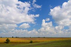 Uprawiać ziemię pola podczas dnia Zdjęcia Stock
