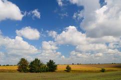 Uprawiać ziemię pola podczas dnia Fotografia Royalty Free