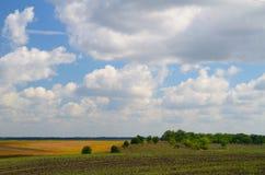 Uprawiać ziemię pola podczas dnia Obrazy Royalty Free